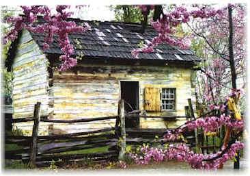 homestead_cabin.jpg