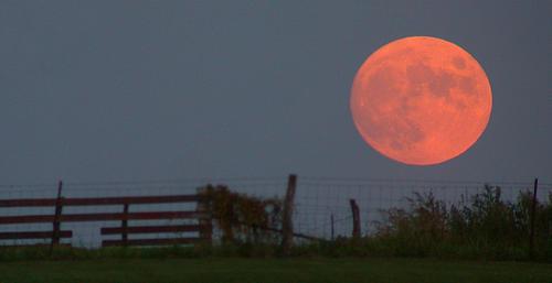 Harvest_moon.jpg